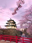 Văn học di dân Nhật Bản - thích ứng và lai ghép