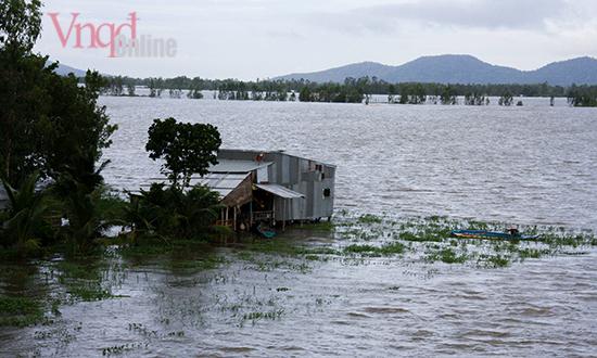 5 Nhiều nhà cửa nhiều con đường ngập trong nước