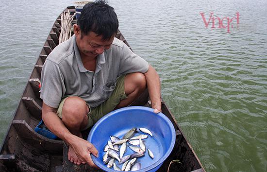 9 dớn là dụng cụ chủ yếu để bắt cá linh mùa nước nổi